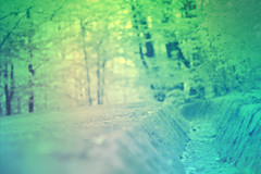 blur-dreamy-texture-texturepalace-51 (texturepalace) Tags: blur color leaves cc creativecommons dreamtextures texturepalace blurtextures