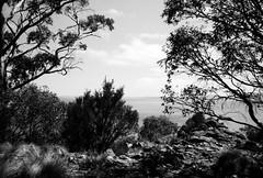 Great Lake (Kent Holloway) Tags: au australia tasmania leicam6 fujiacros100 miena summicron35mm