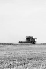 DSC_2049 (Joe Nathan78) Tags: field nikon champs machine agriculture moisson 105mm moissonneuse d700
