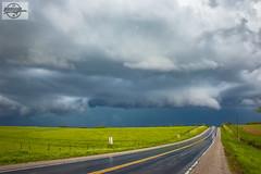 Missouri Storm Chasing at Plattsburg, MO (Nanner Hogger) Tags: cloud storm rain weather tornado meteorology stormchasing tornadic tornadowarning stormchaser severethunderstorm tornadoalley severethunderstormwarning tornadochasing stormspotter stormspotting