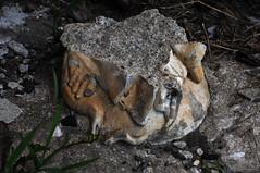 Virgin Feet (Violentz) Tags: old broken statue vintage virginmary remnant virginmarystatue