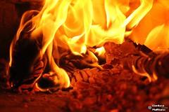Burning Coals (gianluca_malfitano) Tags: italy color macro canon blackwhite flickr colore photos hobby volo sicily augusta 1855 freddo fuoco siracusa facebook temperatura magia caccia caldo 70300 gianluca fotografando rettili malfitano gianlucamalfitano