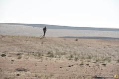 3-Oman-Desert-Marathon-Day-4_5956