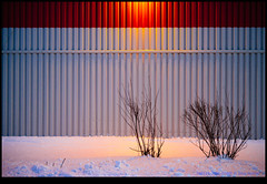 160115-3666-EOSM.jpg (hopeless128) Tags: trees light snow canada wall wow newbrunswick riverview 2016 explored
