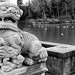 Chinese Stone Lion, Highfields Park