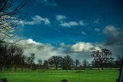 (martinpower2001) Tags: ireland sky green grass clouds nikon bluesky d200 beginner laois