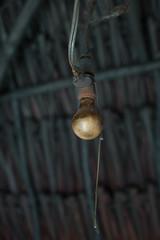 black bulb (FiPremo) Tags: black bulb mexico nero lampadina capanna