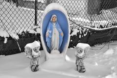 Virgin Snow (Violentz) Tags: winter snow virginmary rosarybeads reverema lawnstatue virginmarystatue