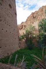 imgp5266 (Mr. Pi) Tags: mountains morocco agriculture kasbah tinghir highatlas