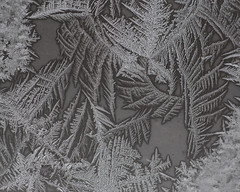 Frost (maryjunk1) Tags: winter snow macro texture window beautiful canon frost pattern bright outdoor frosty iowa frostywindow iowawinter canon6d frostwindow macrodreams