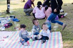 BM7Q4367.jpg (Idiot frog) Tags: park family boy sunlight cute boys field grass kids children happy daylight picnic child outdoor bade happiness sunbath daytime joyful taoyuan happyhour hangout ecosystem