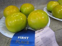 starr-091003-7544-Diospyros_kaki-Muru_fruit-Maui_County_Fair_Kahului-Maui (Starr Environmental) Tags: diospyroskaki