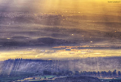 Open your close eyes (Davide Castiglione) Tags: trees light nature fog alberi sunrise golden shadows details atmosphere ombre hills sicily nebbia hdr enchantment luce catania sunbeams raggi raysoflight 70300 sharpness 170mm nikond5100