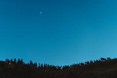 (iam543) Tags: sky moon mountain taiwan nantou renai hehuanshan kodakportra160 hehuanmountain vscofilm sonya7r sonyalpha7r sonyilce7r