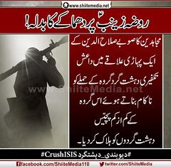 روضہ زینبؑ پر دھماکے کا بدلہ! مجاہدین کا صوبے صلاح الدین کے ایک پہاڑی علاقے میں داعش تکفیری دہشت گرد گروہ کے حملے کو ناکام بناتے ہوئے اس گروہ کے کم از کم پچّیس دہشت گردوں کو ہلاک کر دیا۔ http://www.shiitemedia.net/ur/index.php/9520 (ShiiteMedia) Tags: pakistan از shiite پر صلاح اس الدین کا کم گرد کو کر کے shianews میں ایک shiagenocide shiakilling تکفیری ناکام داعش بناتے shiitemedia shiapakistan mediashiitenews ہوئے ہلاک دہشت گردوں زینبؑ علاقے دیا۔ دھماکے روضہ گروہ بدلہ پہاڑی پچّیس httpwwwshiitemedianeturindexphp9520shia مجاہدین صوبے حملے