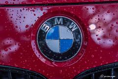 _RAM1491-Edit (srisnap) Tags: car rain logo drops voigtlander bmw d750 raindrops fx closeups bmwcar