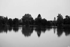 IMG_7221 ( Lettie Photography ) Tags: summer lake color nature water colors landscape blackwhite colorful noir country lac nb paysage blanc turenne correze corrze limousin noirblanc et turennegare