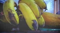 Banana, mamo. Mamo e banana (juliano.fchaves) Tags: orange black yellow fruit zeiss nokia banana fruta carl sight filters 930 mamo filtros lumia pureview camera360