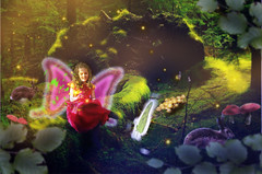 Es war einmal / Once upon a time (DanielHiller) Tags: pets tree mushroom sunshine forest butterfly tiere nikon hare comic glow creative gimp manipulation elfe kind fairy fantasy pilze wald baum hase sunbeams compositing schmetterling wurzel mrchen sonnenschein fairytail glhwrmchen