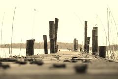 Out into bliss (tusenord) Tags: bridge beach monochrome strand landscape highkey bryggor fotosondag fs160207