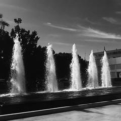Fountain (yaelgasnier) Tags: travel bw monochrome square colorfull morocco squareformat maroc marrakech marruecos bnw marokko المغرب wonderfulplaces 摩洛哥 マラケシュ shotaward vsco beautifuldestinations iphoneography instagramapp instamorocco igworldclub iphone6plus marocphotonet