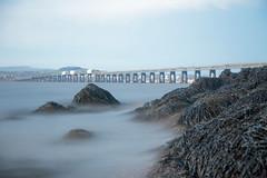 Evening on the River bank (reiver iron - RMDPhotos.co.uk) Tags: bridge seaweed rock river scotland long exposure fife dundee bank rail tay