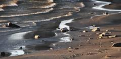 Wind on the River (Elizabeth Almlie) Tags: sunset rock river waves shore