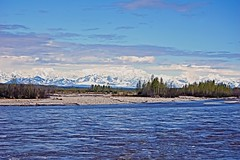 Alaskan Range (Herculeus.) Tags: trees snow mountains alaska river landscapes outdoor ak sandbar pines glaciers current 5photosaday alaskanrange nikond40