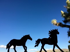 Playing With Toys (A Wild Western Heart) Tags: horses silhouette toy play mustangs schleich