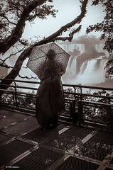 Admiring Iguazu Falls on a rainy day (Phil Marion) Tags: travel wedding boy vacation people woman hot cute sexy praia beach girl beautiful beauty sex brasil canon naked nude amazon samba slim nu candid hijab nackt explore tranny xxx chubby  phat burqa nudo desnudo riodejaniero  nubile telanjang schlampe    5photosaday brasiliera explored  thn nijab alaston    kha    malibog    philmarion         saloupe
