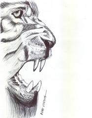 leon a lapicero (ivanutrera) Tags: animal pen sketch drawing lion leon draw dibujo lapicero boligrafo dibujoalapicero dibujoenboligrafo