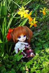 Eva (.: Miho :.) Tags: cute girl ball berry doll dolls kitty kimono bjd custom custo jointed hujoo