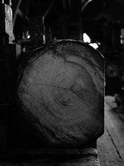 Sgewerk (RS_1978) Tags: blackandwhite bw schweiz zrich schwarzweiss sawmill ch olympuspenf andelfingen