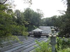 Wasabi farm in Azumino, Japan, 2014 (mrshibuyaboy67) Tags: bridge green nature japan farm crops wasabi azumino