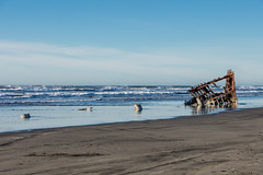 2016-01-10 - Peter Iredale Shipwreck-63 (www.bazpics.com) Tags: ocean sea usa beach water oregon america skeleton sand ship pacific or wave peter shipwreck frame hull wreck iredale