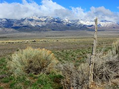 4-1-16 Scipio, UT (the_sun_dagger) Tags: mountains utah scenery scipio