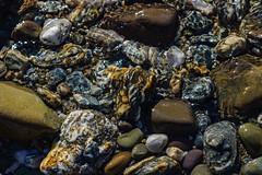 Lake Pebbles (Falcdragon) Tags: newzealand lake water rocks stones pebbles otago queenstown theremarkables minoltarokkormc135mmf28 ilce7 sonya7alpha