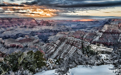 In the Cold Light of Day (BlueberryAsh) Tags: winter usa snow sunrise landscape nationalpark december outdoor grandcanyon south canyon southrim nikond600