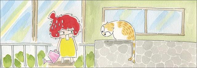 家裡來了一隻貓 貓咪沒有懼高症