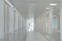 Week 16 Minimal - Office Refurb (steven.kemp) Tags: london office minimal refurbishment