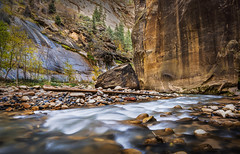 Between a Rock and a Wet Place (Matty Patty Photography) Tags: nature landscape utah stream canyon boulder adventure zion narrows