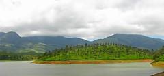 IMG_1952 (Chandan Pathak) Tags: lake nature tea southindia munnar