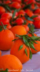 Nice - March (majorlaurent) Tags: orange france fruit french nice market bokeh blurred cote march flou dazur