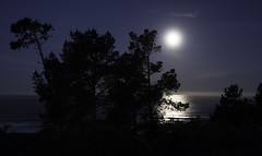 Moonlight I (Joe Josephs: 2,650,890 views - thank you) Tags: ocean california moon skyline landscape pacificocean moonlight westcoast fineartphotography travelphotography californialandscape landscapephotography outdoorphotography fineartprints joejosephsphotography