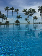 Skycity Infinity Pool (kelliejane) Tags: pool nt australia darwin infinitypool northernterritory skycity 2016 mindilbeach palmtreepalm kelliejane darwinskycity