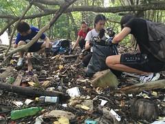 23-Env&CivSoc-World-Water-Day-LCK-Cleanup-26Mar16 (Habitatnews) Tags: mangrove capt nus worldwaterday limchukang iccs