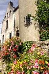 Floral Brittany (Tony Shertila) Tags: flowers houses france buildings geotagged brittany europe outdoor bretagne fra breton larochebernard bertayn geo:lat=4751811730 geo:lon=230244040