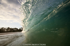 IMG_0081 copy (Aaron Lynton) Tags: beach canon big barrel wave 7d spl makena shorebreak lyntonproductions