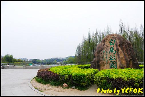 P1000417