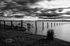 DEHESA  angulo (Quirs Fotografa) Tags: bw naturaleza parquesnacionales blanco atardecer agua y negro paisaje nd contraste romantic seda melancola efecto dehesa medioambiente filtro quirsfotografa